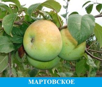 Мартовское